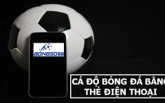 Cá độ bóng đá online bằng thẻ cào điện thoại: Nên hay không?