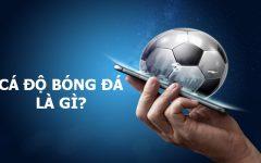 Cá độ bóng đá là gì? Tổng hợp kiến thức mà cược thủ cần biết