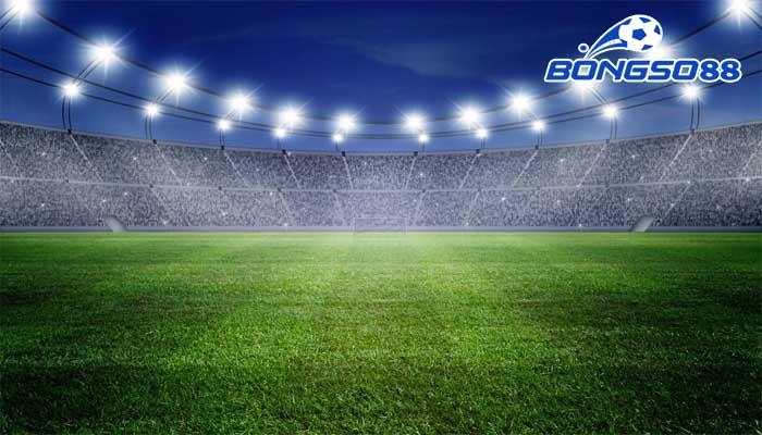 cỏ sân bóng đá